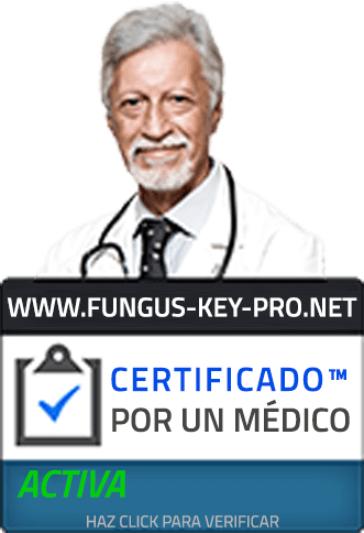 The fungus key pro
